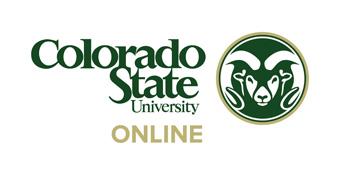 CSU Online_340