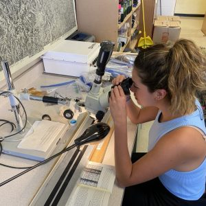 Woman looks in stereo microscope