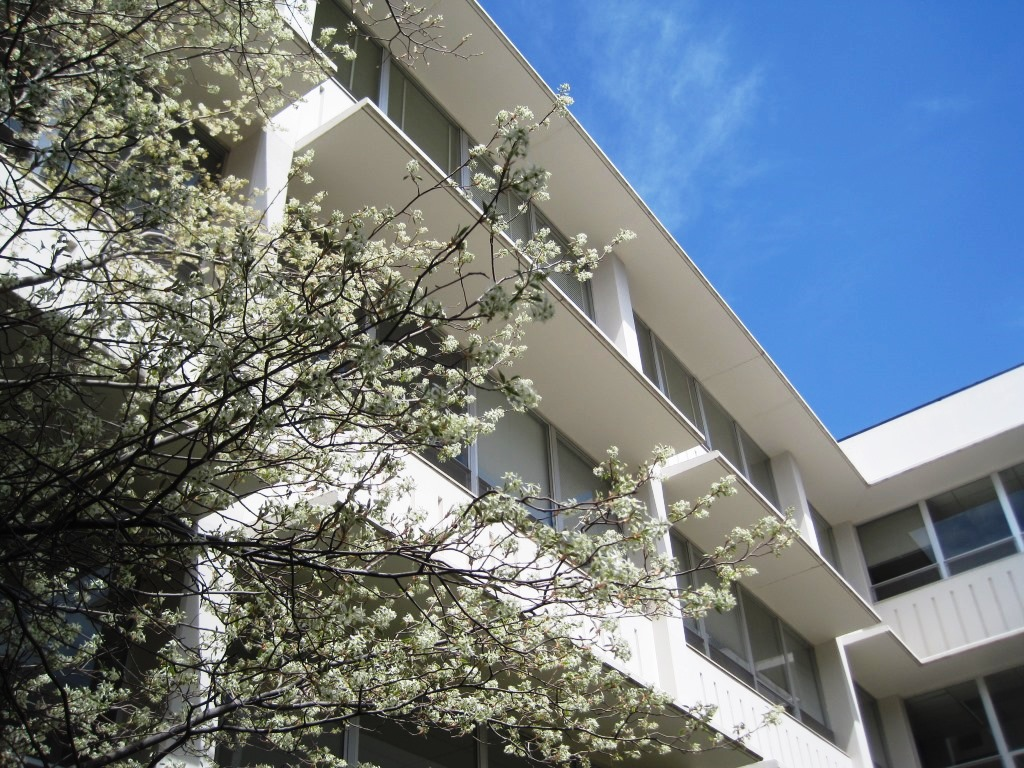 Things are blooming at Eddy Hall
