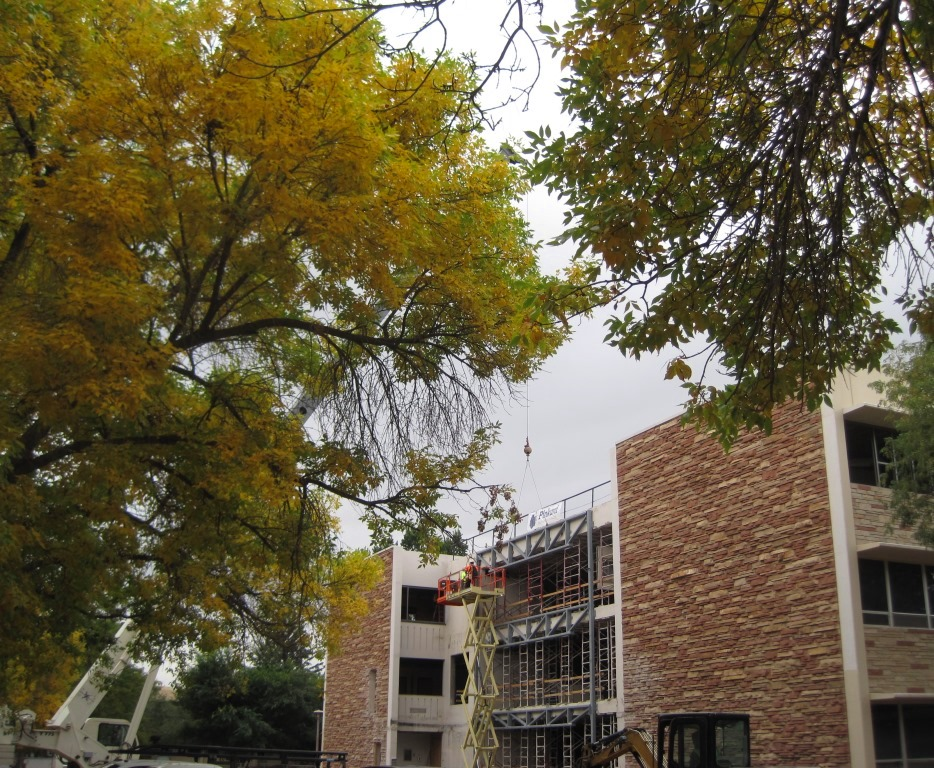 The leaves turn color as renovations on Eddy Hall continue