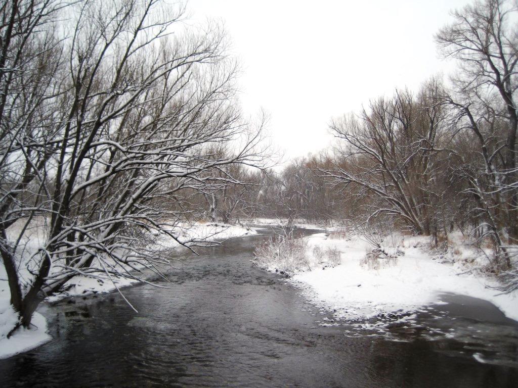 Poudre River, image by Jill Salahub