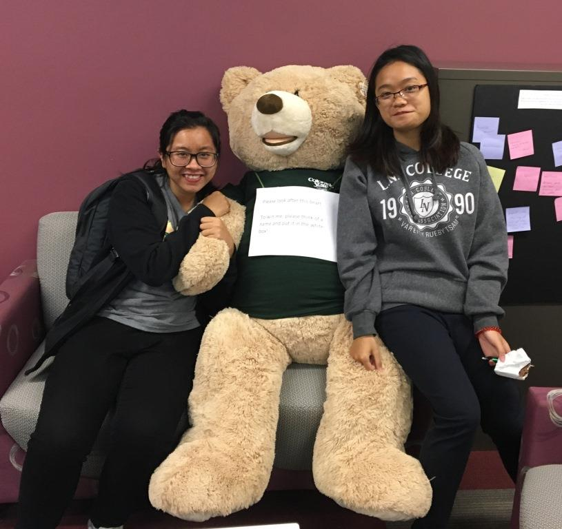 We want to win this bear!