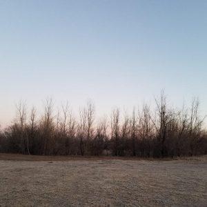 Morning sky over Soft Gold Park