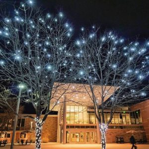 Trees with lights outside the Lory Student Center