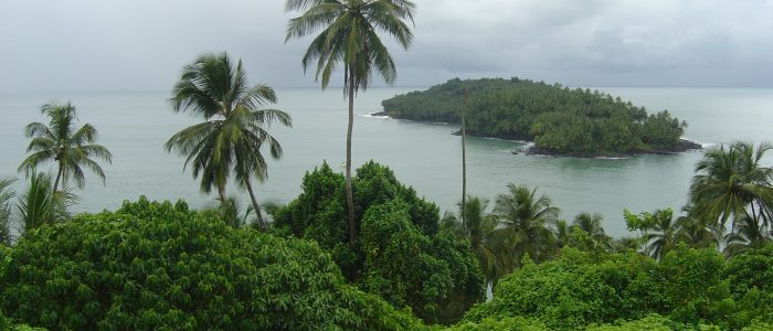 Picture of the sea shore in French Guinea