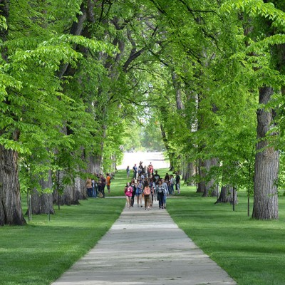 Students walking through the Oval