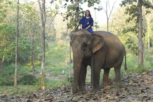 Ashley Colburn rides an elephant during a shoot for a travel program