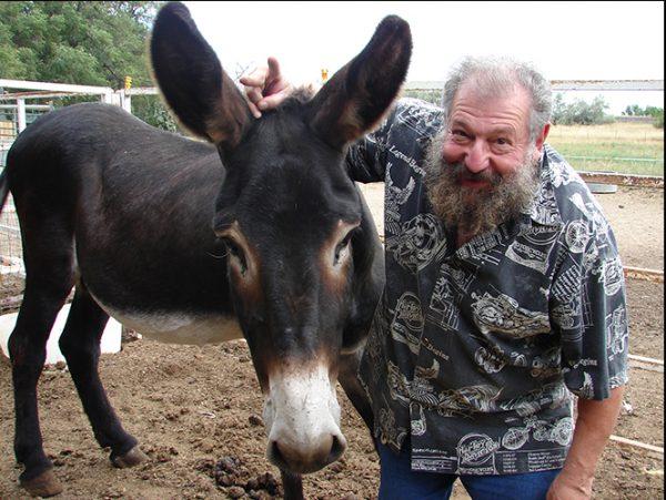 Bernie donkey fun