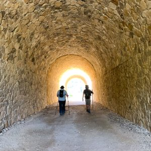Two men walking the Camino de Santiago pilgrimage