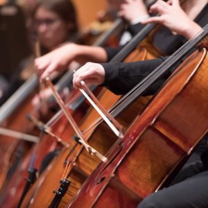 Cellists in the CSU Symphony Orchestra