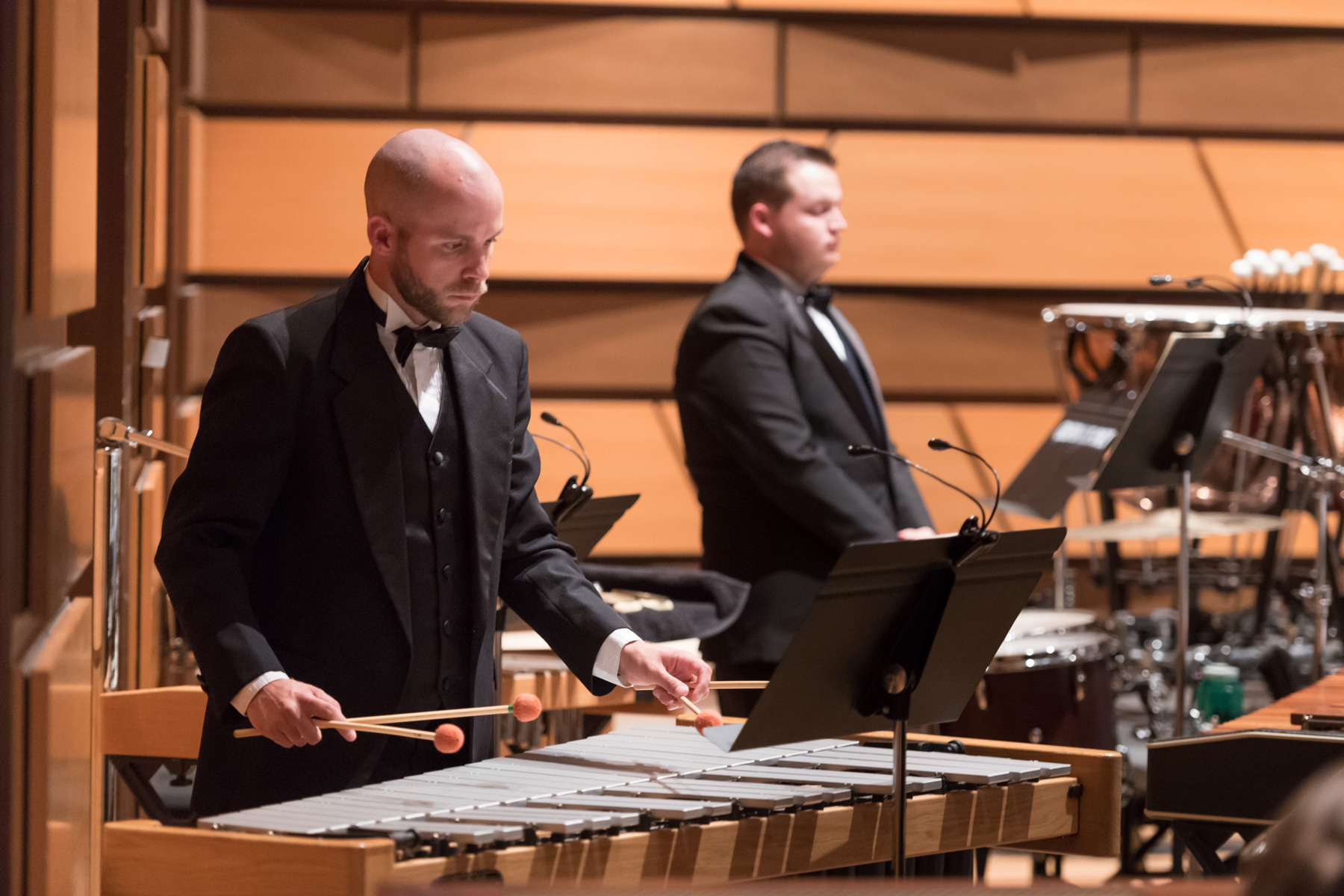 Percussionists in the CSU Concert Band