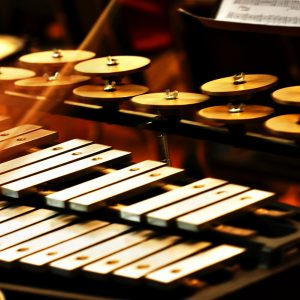 Percussion Instrument pictured