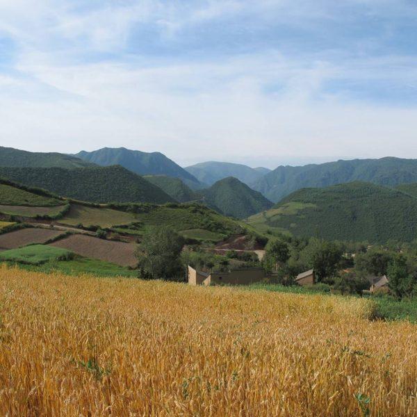 Nuanshui fieldsite village