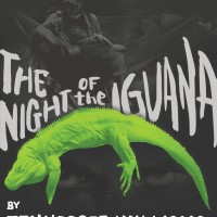 Iguana Poster CSU