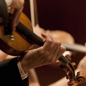 Violinist in the Chamber Music Recital