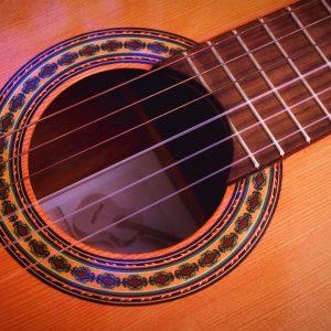 Instrument Photo Guitar