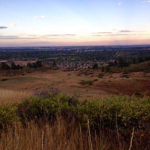 rural_landscape
