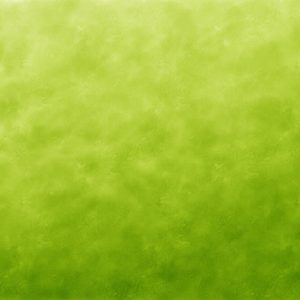 green banner image