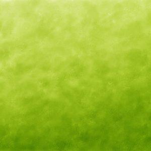 green banner image