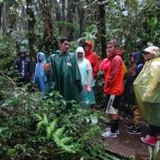 Students in rainjackets in the Costa Rican Cloud Forest