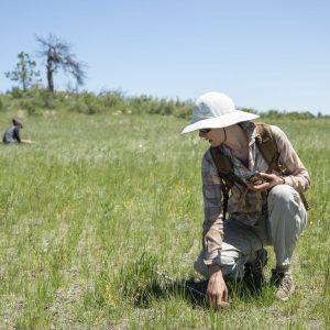 Kristin Maxwell in the field