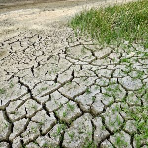 Cracked earth from drought and climate change