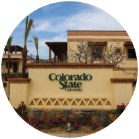 Colorado State University sign at the Todos Santos Center in Mexico