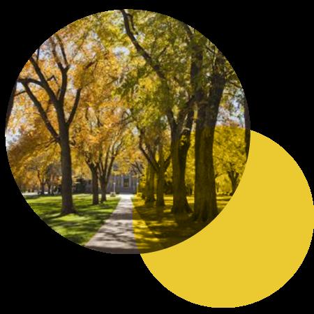 CSU Oval in the fall