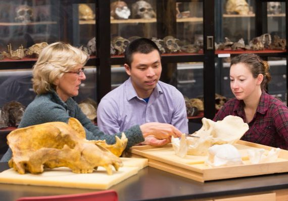Colorado State University Anthropology Professor Ann Magennis works with graduate students David Chen and Aymee Fenwick in the Bioanthropology Laboratory, March 25, 2013.